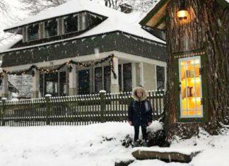 Vrouw verandert 110-jarige dode boom in gratis bibliotheek voor iedereen in de buurt
