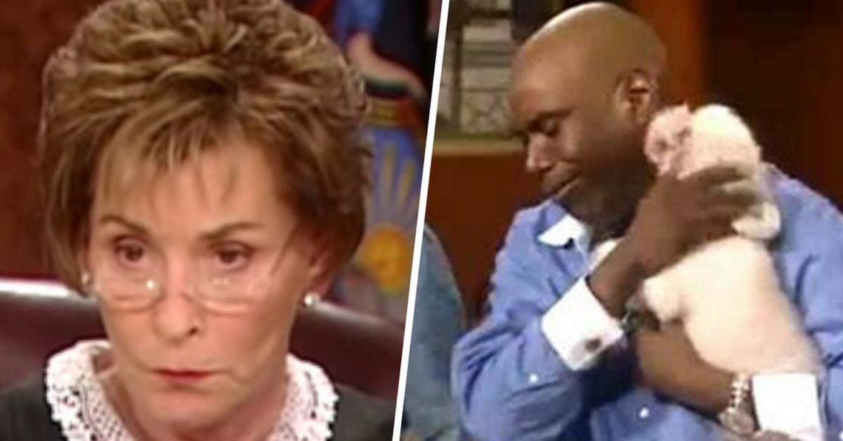 Rechter Judy laat gestolen hond los in de rechtszaal zodat hij kan kiezen wie zijn echte eigenaar is
