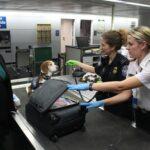 Nederlandse toeristen per direct teruggestuurd uit Griekenland