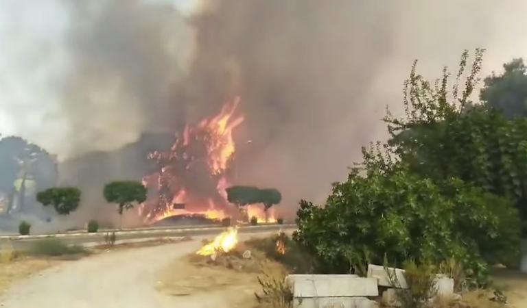 Opnieuw raak: doden en gewonden door ernstige bosbranden Turkije (video)